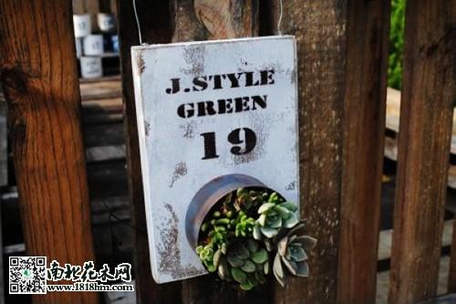 用废旧铁桶制作多肉植物盆景