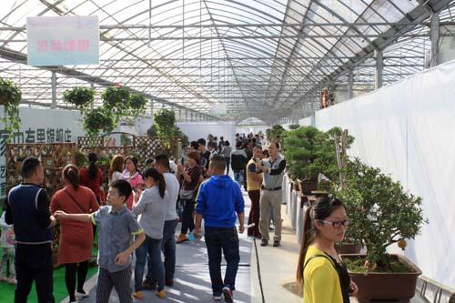 第三届中国沭阳花木节