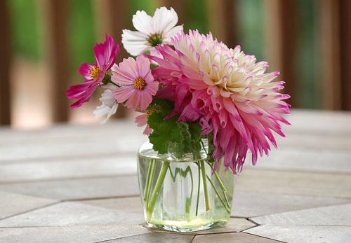 插花造型具体步骤|瓶式插花如何制作