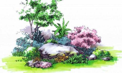 植物组团的价值与前景