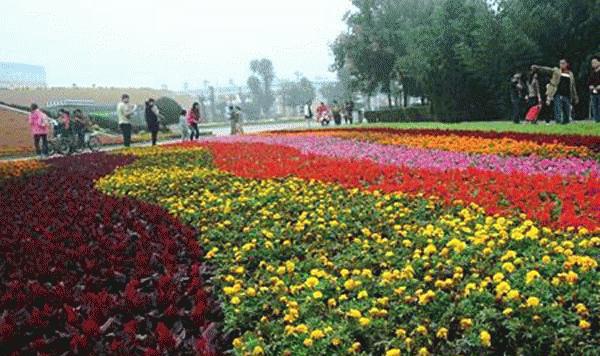 花木产业集聚区成为国家生态旅游示范区——鄢陵