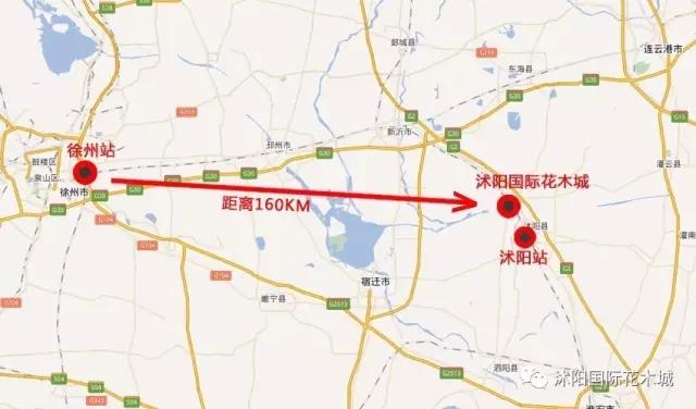▼徐州火车站至沭阳国际花木城距离示意图