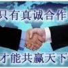 小苗、湖南青钱柳/湖南金钱柳(遥钱树)优质苗木/江西碧青基地