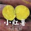 昆山红薯礼盒配送 上海红薯礼盒批发 红薯礼盒哪家好 飨口福供