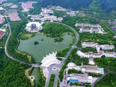 浙江:农林大学位居校园植物排行榜首位