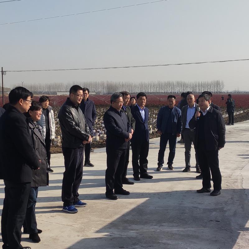 沭阳县委书记卞建军带领观摩团参观 (3)