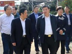 卞建军带领国家自然资源督察南京局领导参观花木城!