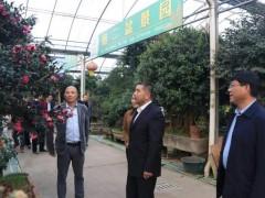 宿迁市副市长阿不力克木·艾则孜莅临扎下镇调研