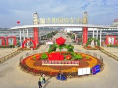 2020第八届中国沭阳花木节今日隆重开幕!