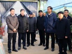 中国楹联学会莅临沭阳国际花木城参观考察